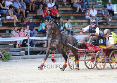 FEI-World-Driving-Championship-for-Singles_2016_Tag4_IMG_9915
