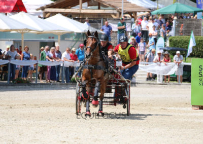 FEI-World-Driving-Championship-for-Singles_2016_Tag4_IMG_9999