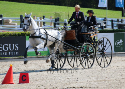 FEI-World-Driving-Championship-for-Singles_2016_Tag5_IMG_1441