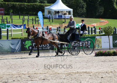FEI-World-Driving-Championship-for-Singles_2016_Tag5_IMG_1468