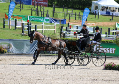 FEI-World-Driving-Championship-for-Singles_2016_Tag5_IMG_1498