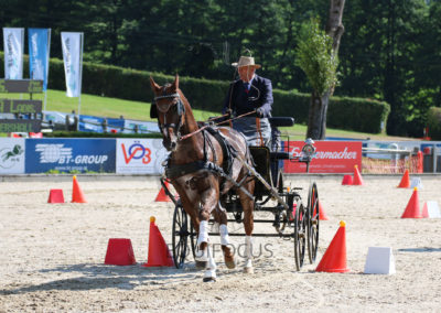 FEI-World-Driving-Championship-for-Singles_2016_Tag5_IMG_1530