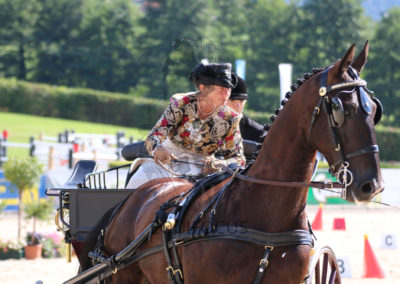 FEI-World-Driving-Championship-for-Singles_2016_Tag5_IMG_1567