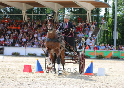 FEI-World-Driving-Championship-for-Singles_2016_Tag5_IMG_1754