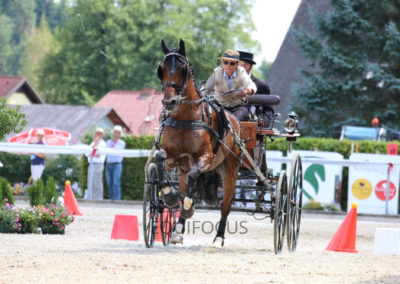 FEI-World-Driving-Championship-for-Singles_2016_Tag5_IMG_1857
