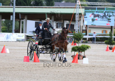 FEI-World-Driving-Championship-for-Singles_2016_Tag5_IMG_1906