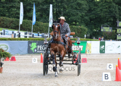 FEI-World-Driving-Championship-for-Singles_2016_Tag5_IMG_1948