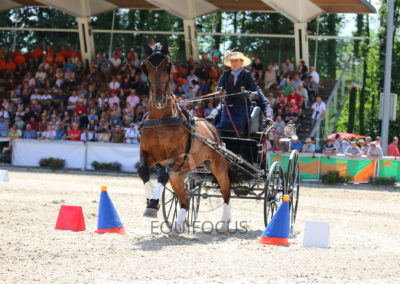 FEI-World-Driving-Championship-for-Singles_2016_Tag5_IMG_1970