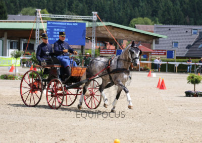 FEI-World-Driving-Championship-for-Singles_2016_Tag5_IMG_2027