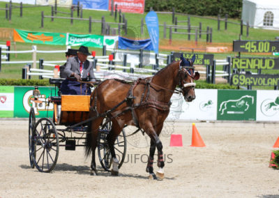 FEI-World-Driving-Championship-for-Singles_2016_Tag5_IMG_2104