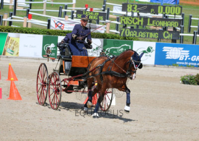 FEI-World-Driving-Championship-for-Singles_2016_Tag5_IMG_2167