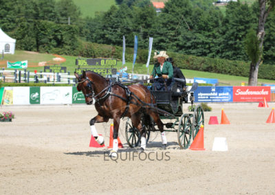 FEI-World-Driving-Championship-for-Singles_2016_Tag5_IMG_2210