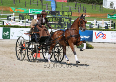 FEI-World-Driving-Championship-for-Singles_2016_Tag5_IMG_2404