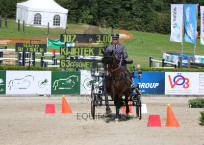 FEI-World-Driving-Championship-for-Singles_2016_Tag5_IMG_2431